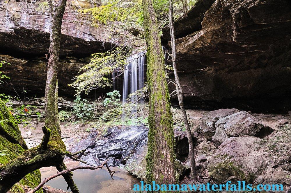 scooby doo falls alabama