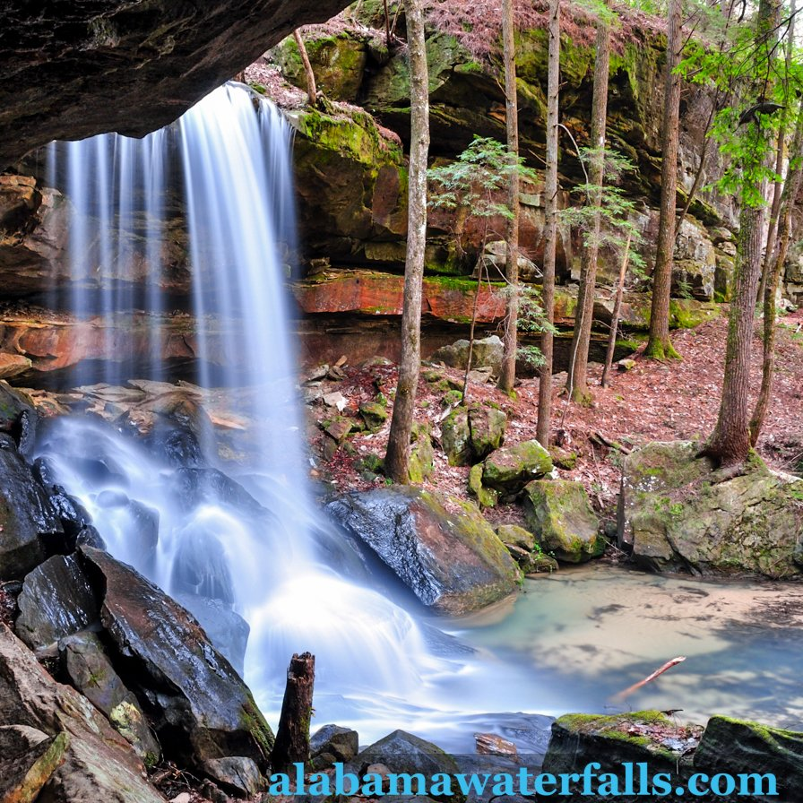 Turkeyfoot falls side Bankhead National Forest