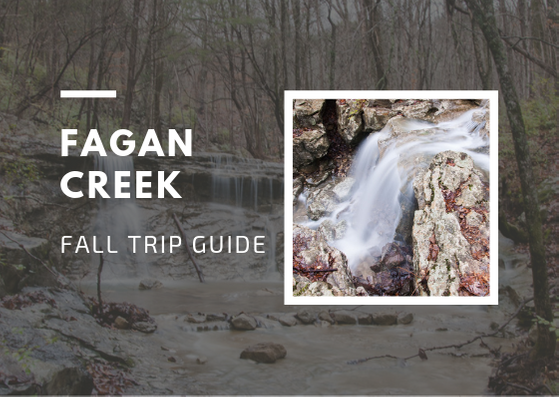 Fagan Creek Fall Trip Guide