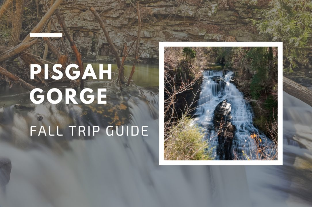 Pisgah Gorge Falls feature