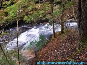 Parker Cascades in the Sipsey Wilderness Area