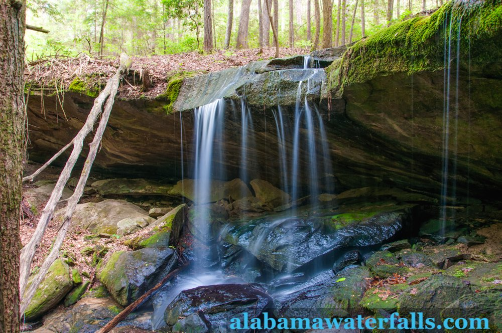 Wolfpen Falls side, Sipsey Wilderness area of Bankhead National Forest