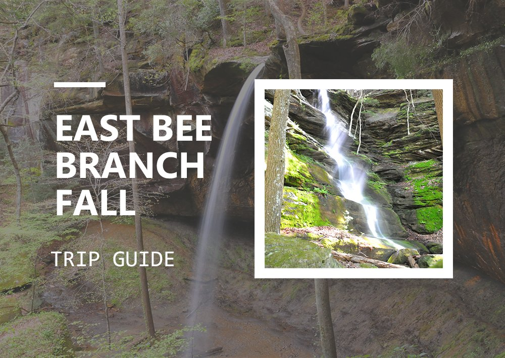 East Bee Branch Falls near Big Tree
